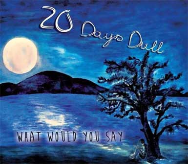 20 Days Dull - What would you Say - CD-Cover (AnyLo - 001 / 2013)